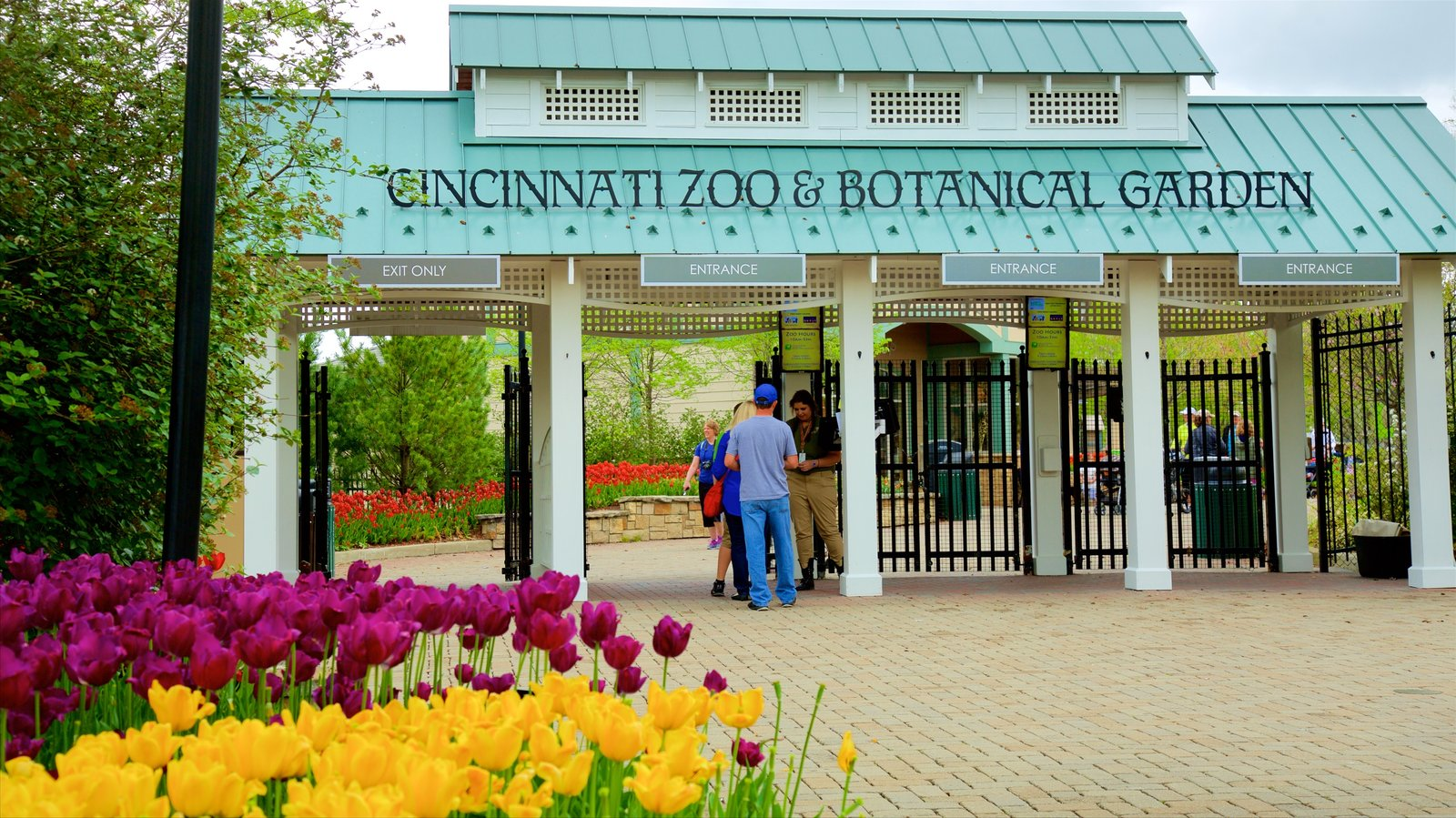 nature pictures: view images of cincinnati zoo and botanical garden