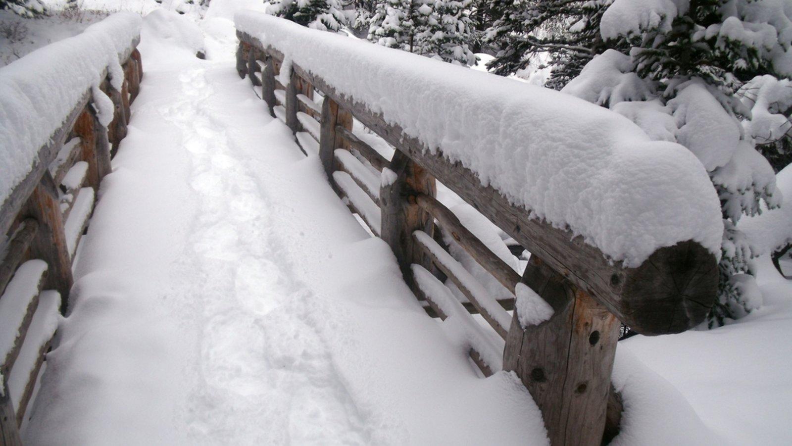 Rocky Mountain National Park mostrando uma ponte e neve
