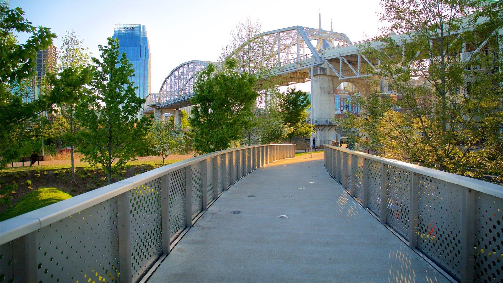 Cumberland Park mostrando un parque y un puente