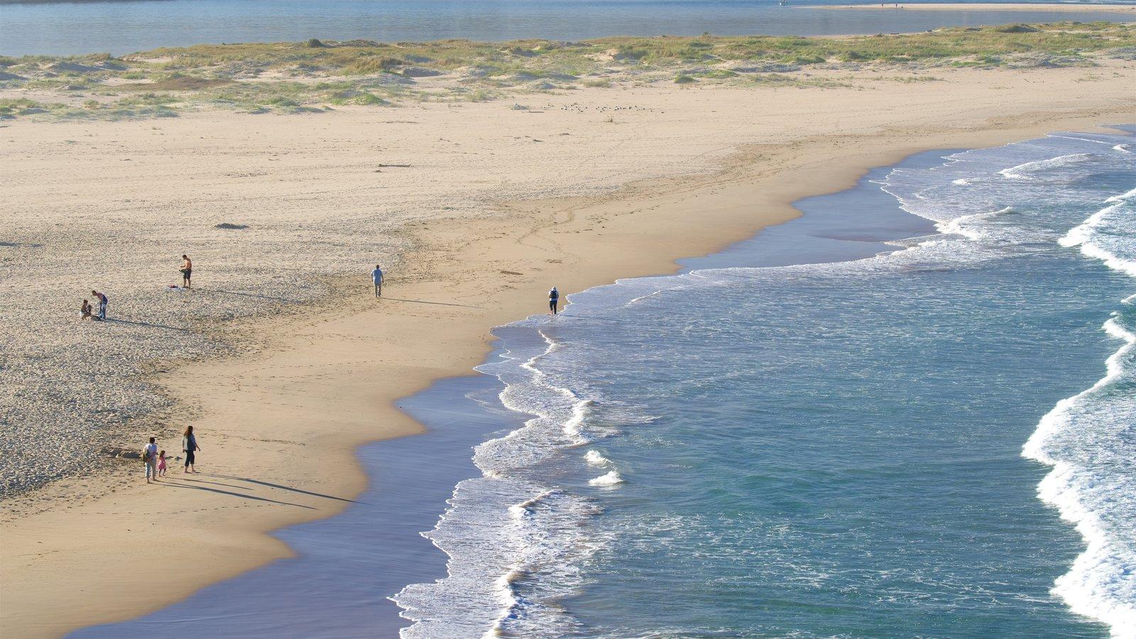 Plettenberg Bay mostrando olas, una playa de arena y vistas generales de la costa