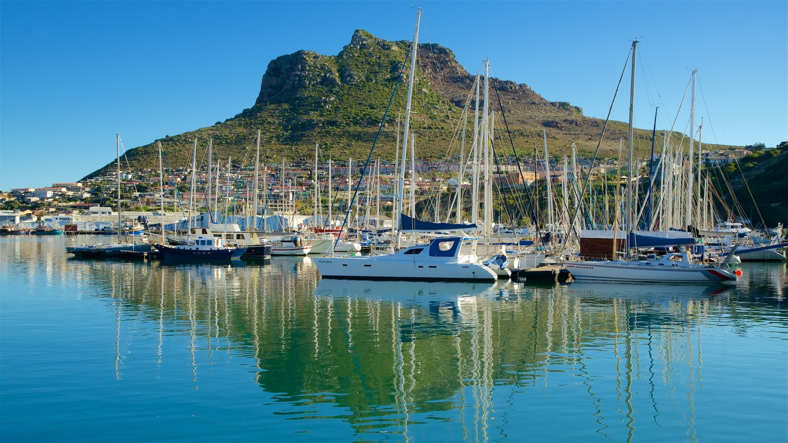 Hout Bay Beach which includes a marina