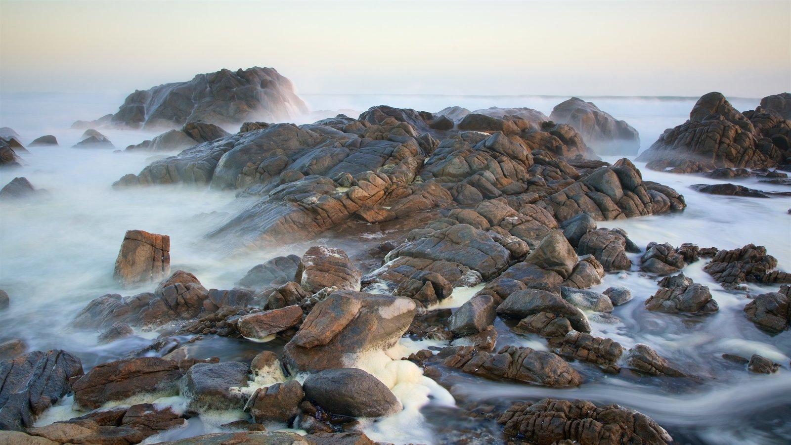 West Coast National Park showing waves and rugged coastline