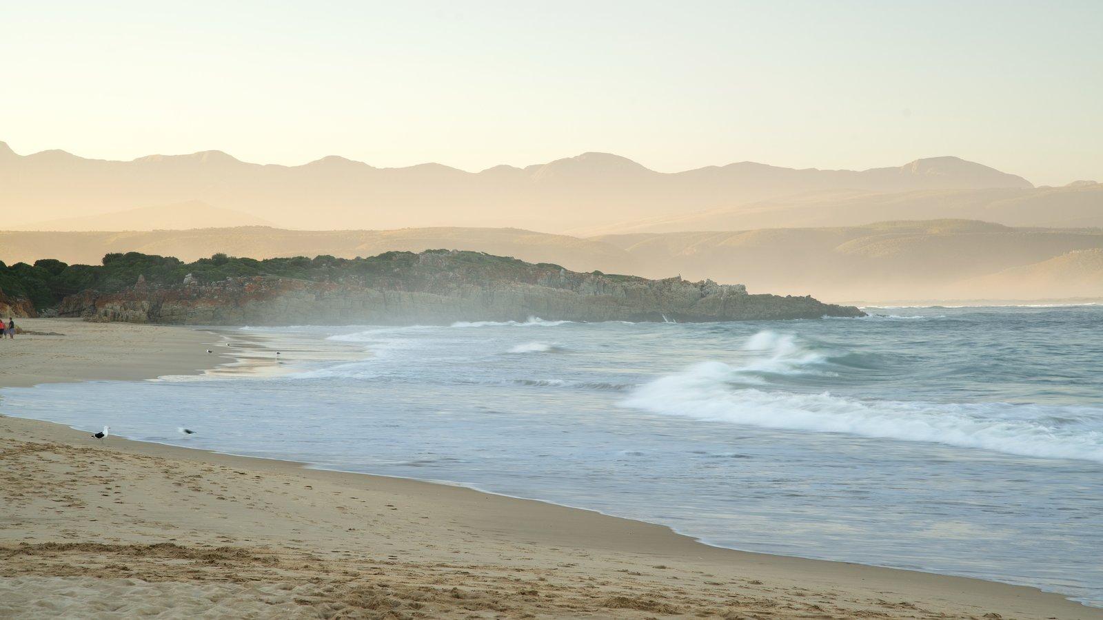 Praia da Baía Plettenberg mostrando uma praia de areia e paisagem