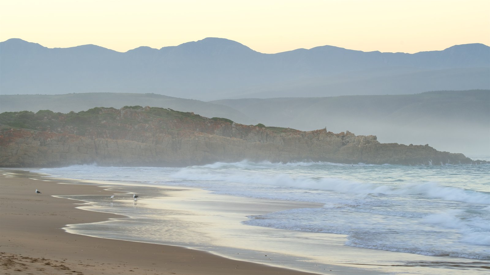 Plettenberg Bay Beach featuring general coastal views, landscape views and a beach