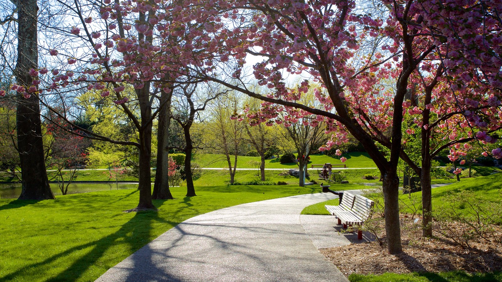 Missouri Botanical Gardens and Arboretum featuring a garden and flowers