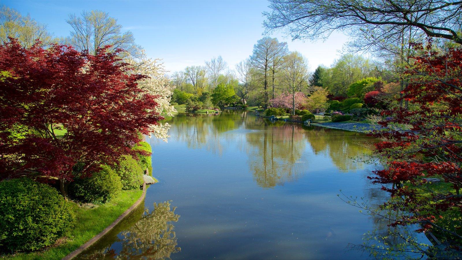 Missouri Botanical Gardens and Arboretum showing a park and a pond