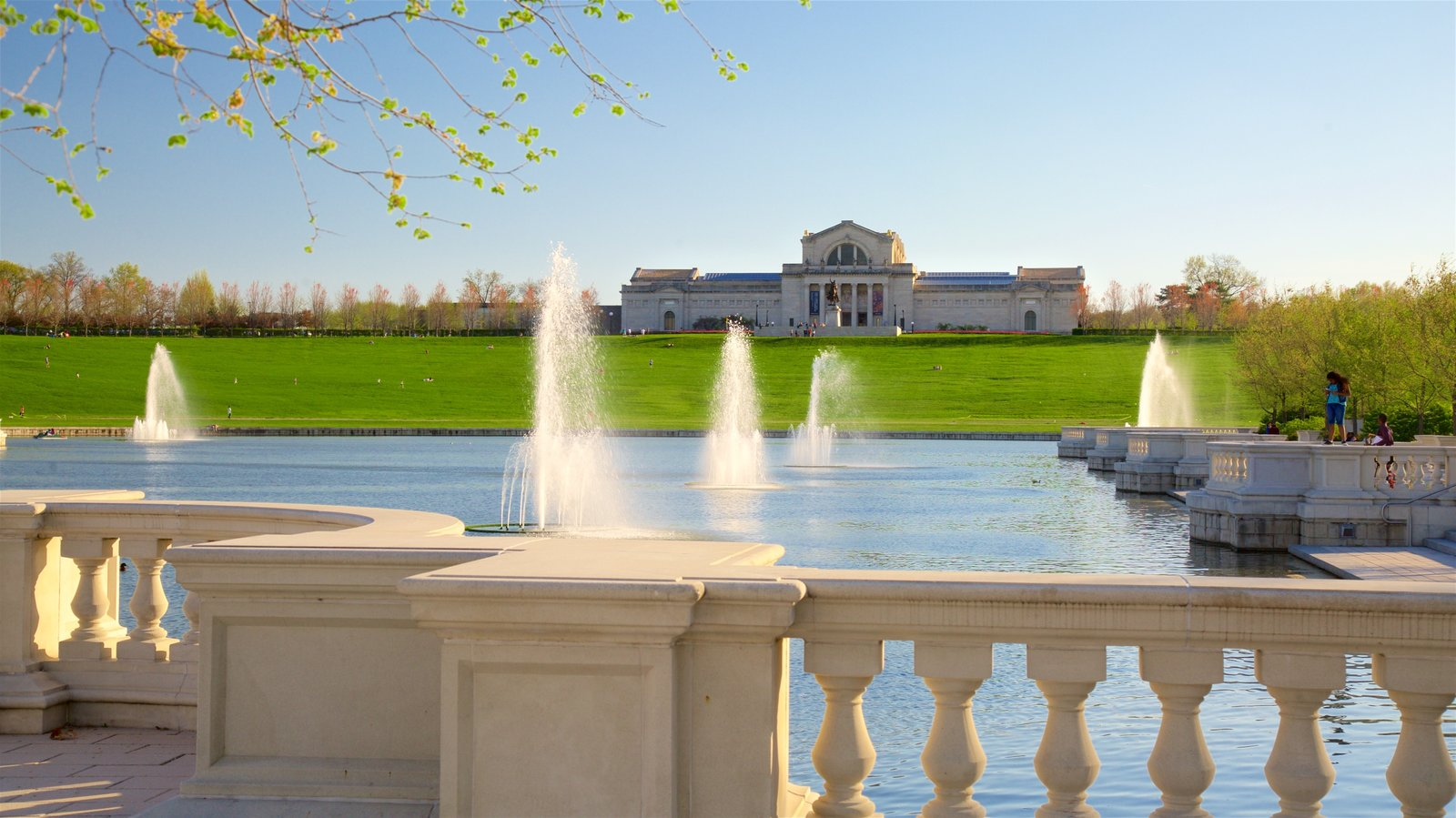 St. Louis Art Museum featuring an administrative buidling, a park and a fountain