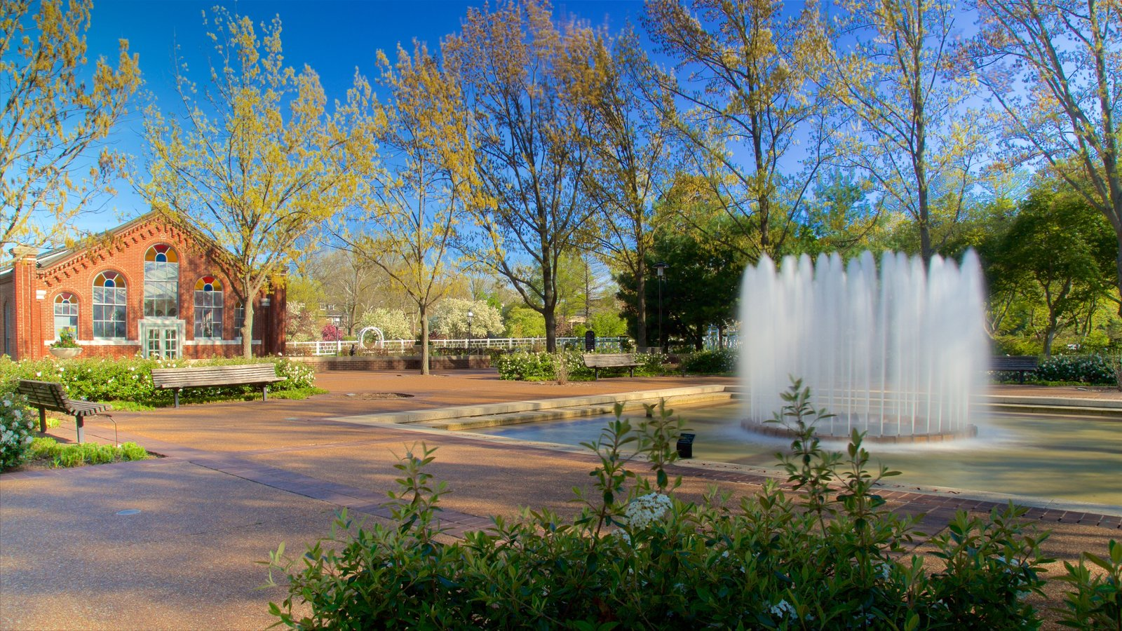 Missouri Botanical Gardens and Arboretum featuring a park and a fountain