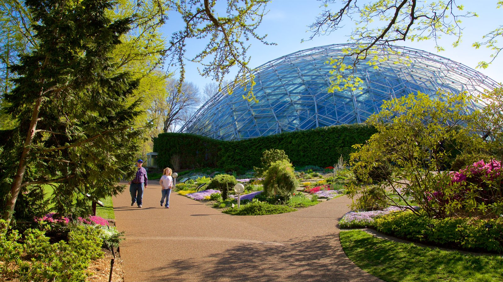 Missouri Botanical Gardens And Arboretum Which Includes Modern  Architecture, A Garden And Flowers