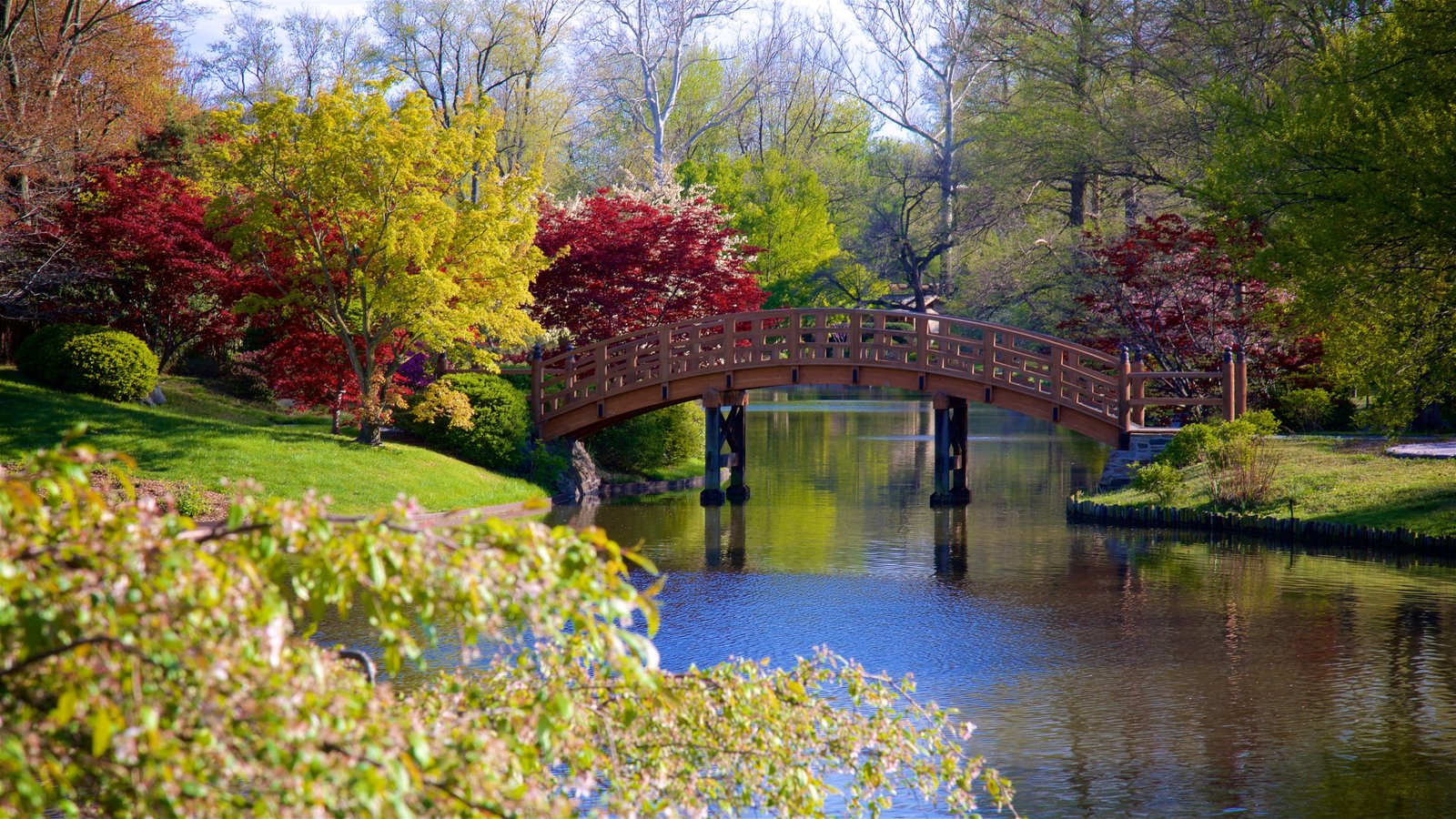 Bon Missouri Botanical Gardens And Arboretum Which Includes A River Or Creek, A  Bridge And A