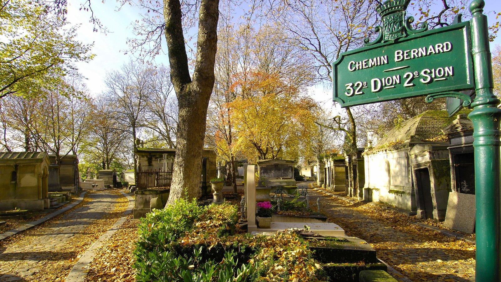 Paris que inclui paisagem, sinalização e um jardim