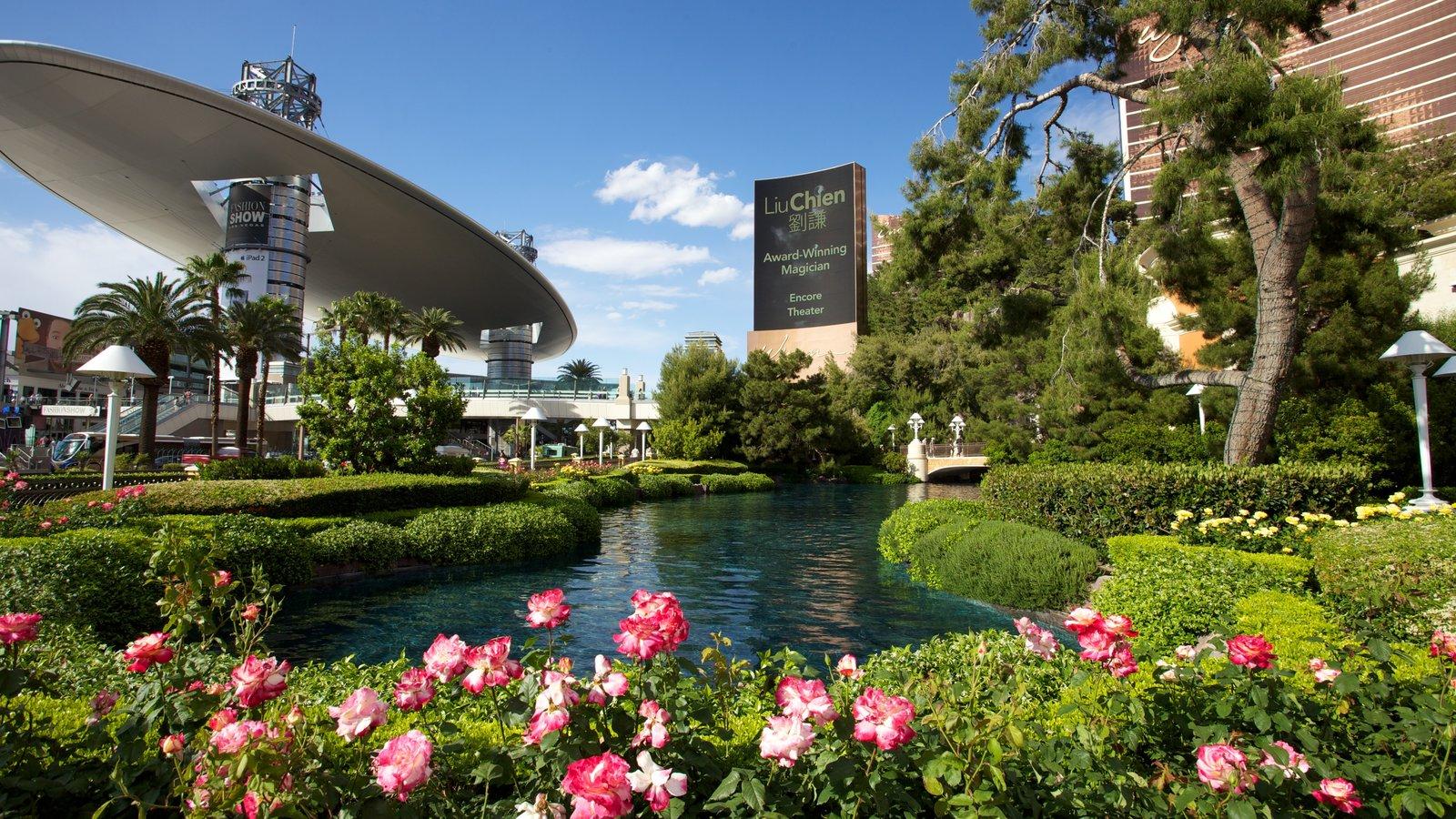 La Franja ofreciendo flores, una ciudad y un estanque
