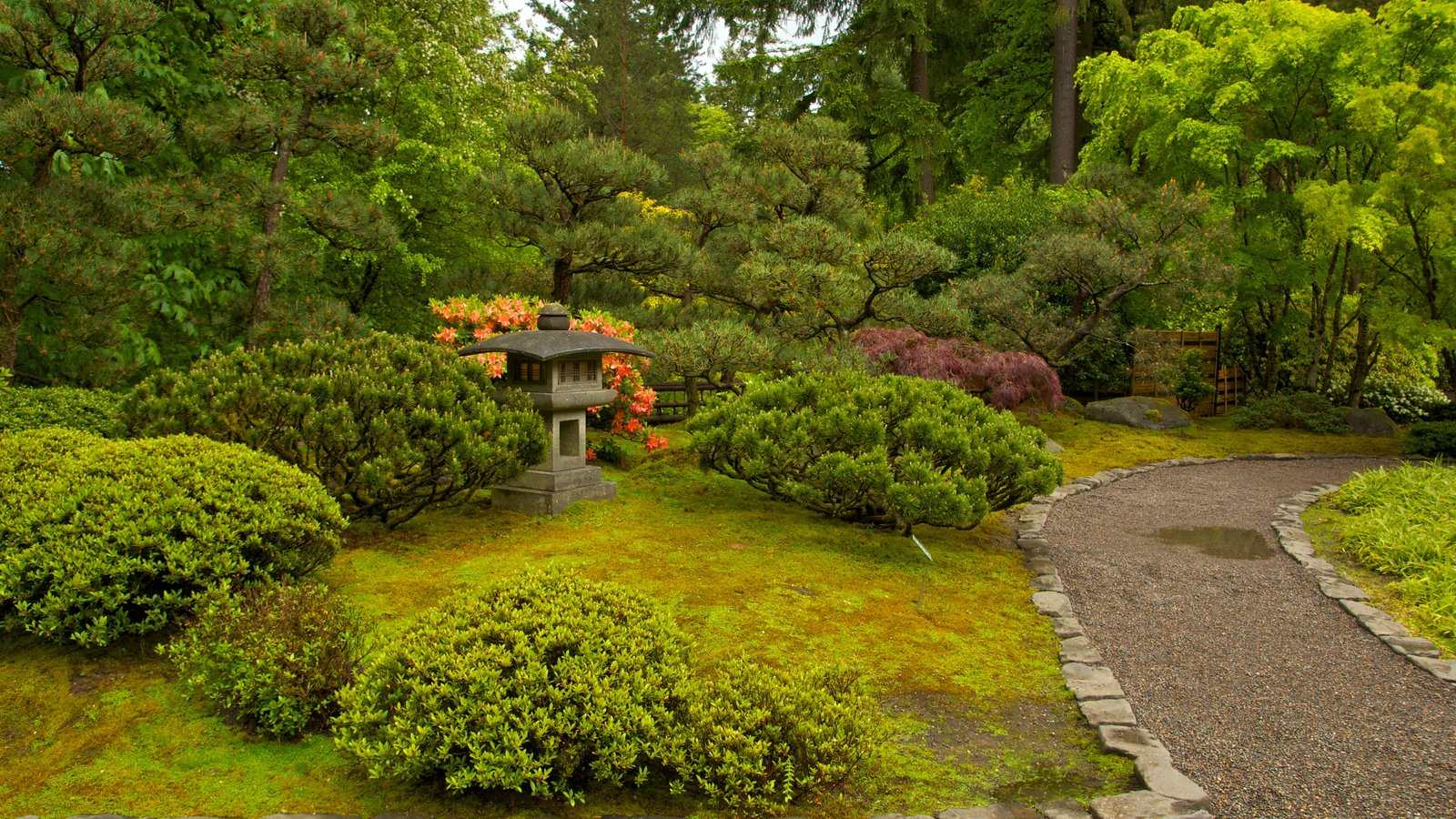 Portland Japanese Garden featuring a park and landscape views