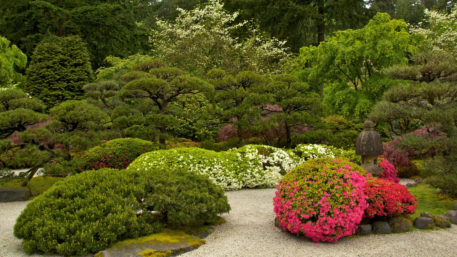 Portland Japanese Garden which includes flowers, a park and landscape views