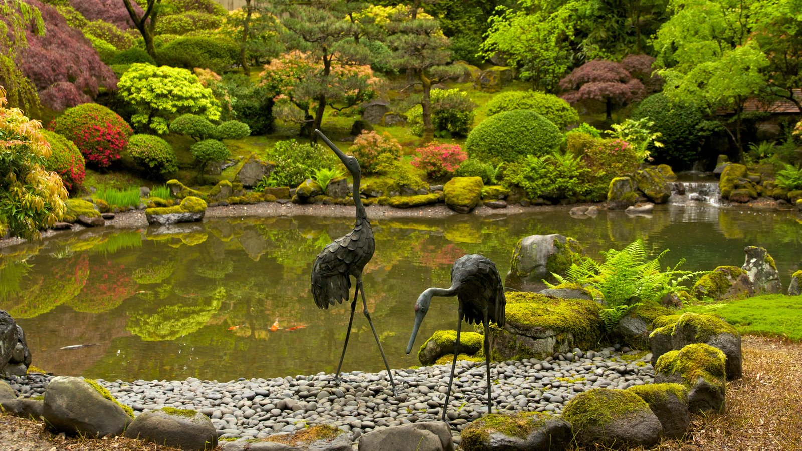 Portland Japanese Garden Pictures View Photos Images Of