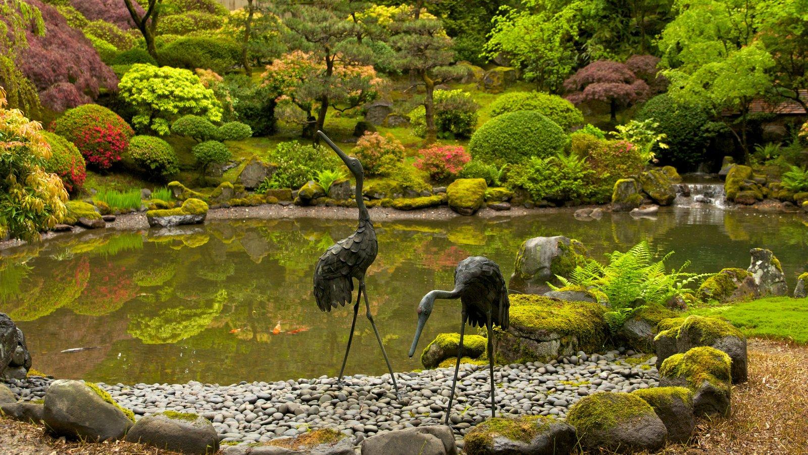 Jardín Japonés de Portland mostrando vida de las aves, un jardín y vistas de paisajes