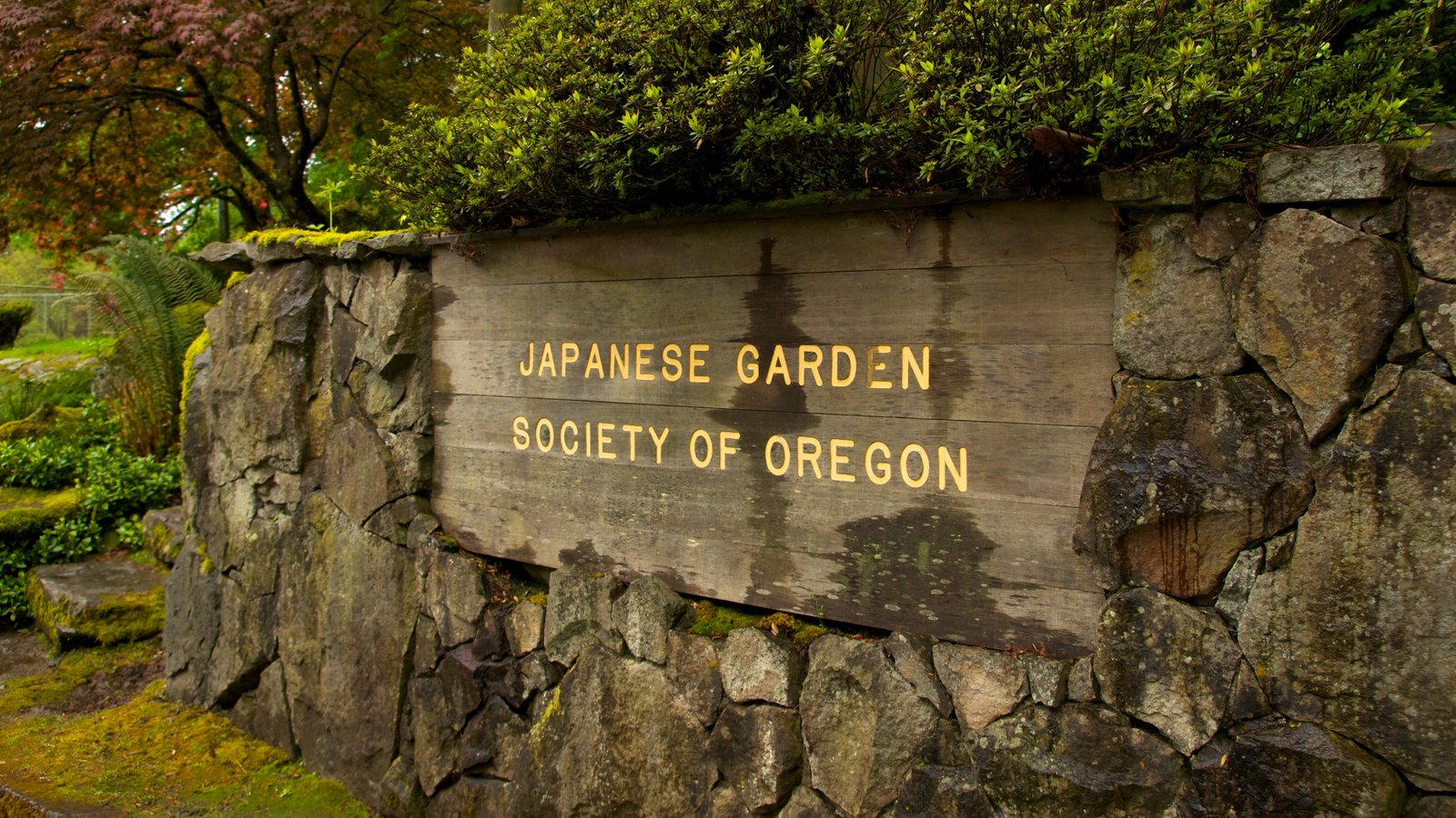 Portland Japanese Garden showing a park, signage and landscape views