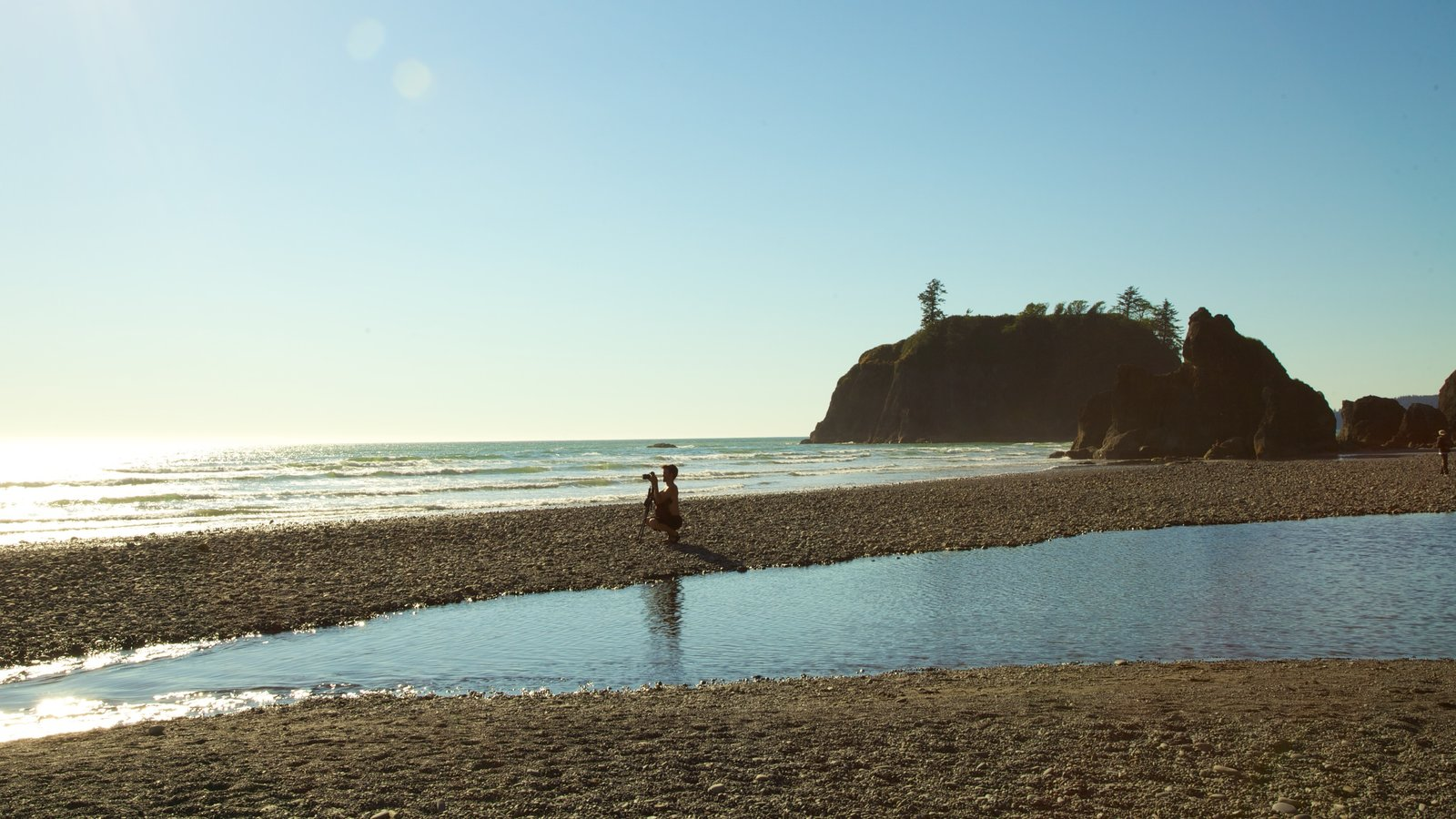 Olympic National Park mostrando paisagem, paisagens litorâneas e uma praia de areia