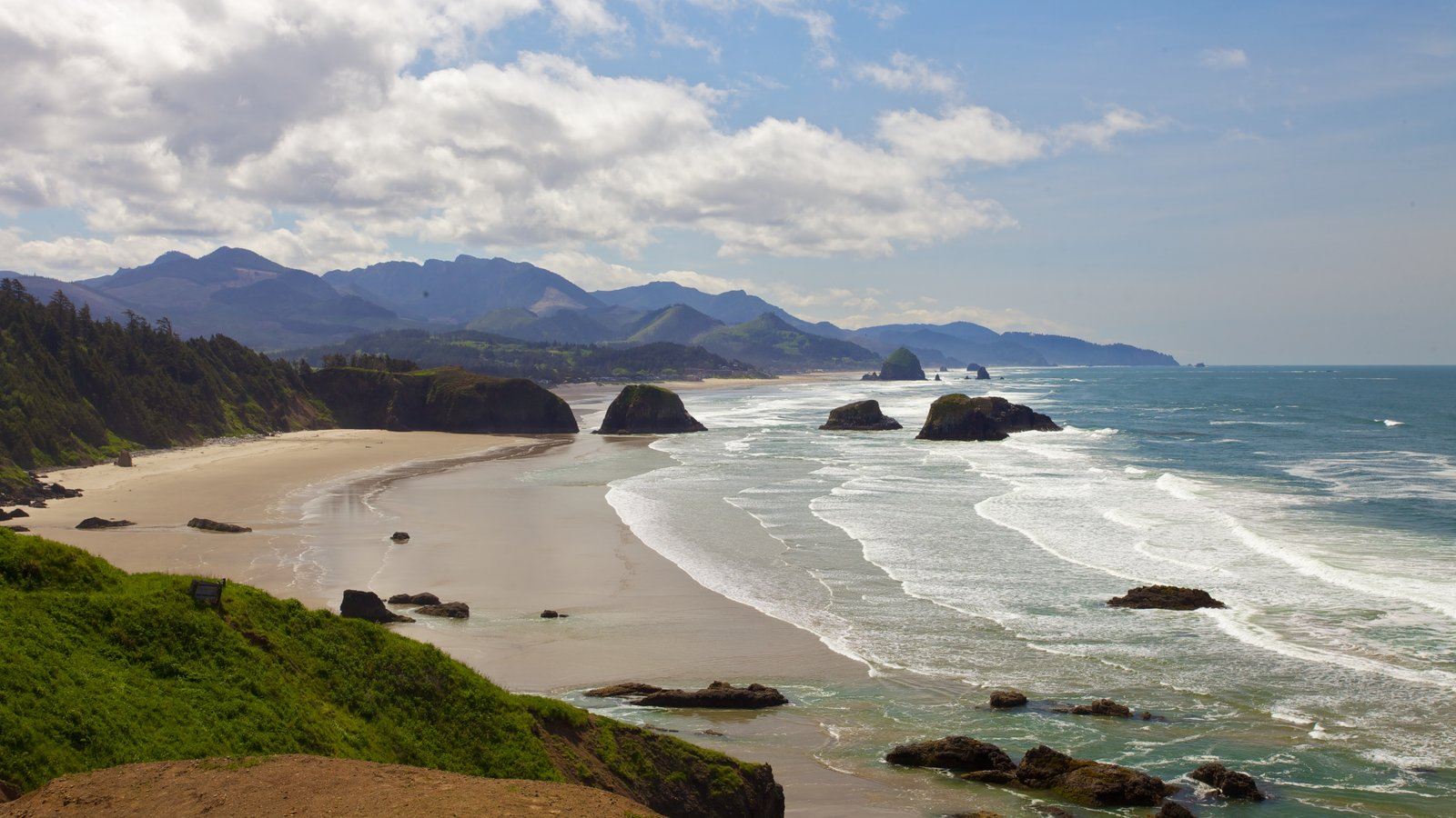 meet cannon beach singles Read southern exposure: cannon beach, meet wikileaks from the daily astorian.