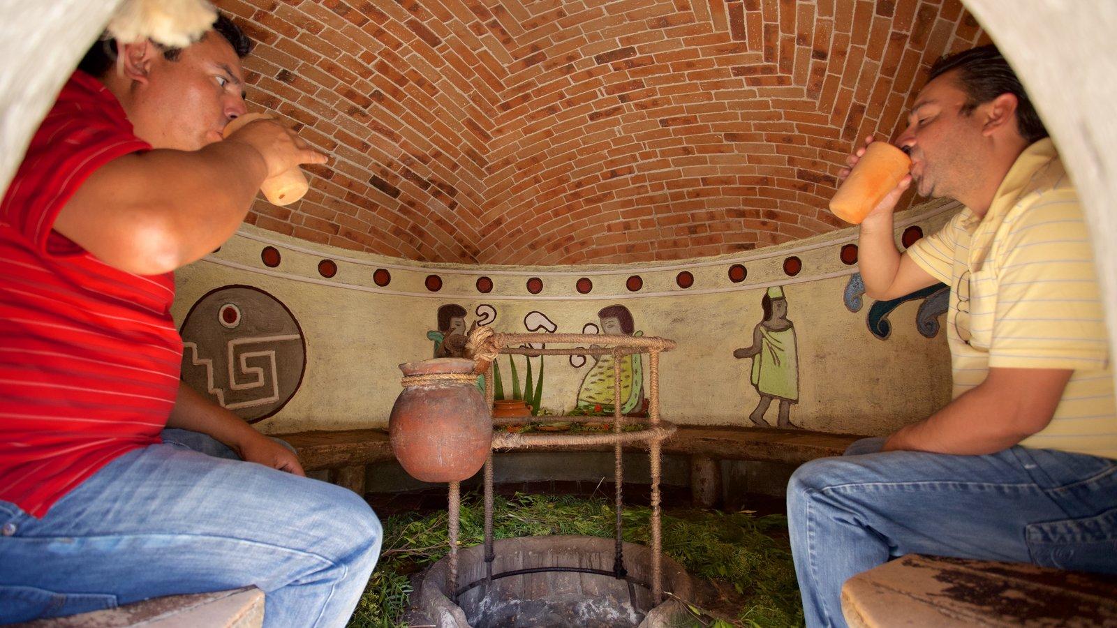 Tequisquiapan caracterizando elementos de patrimônio e vistas internas