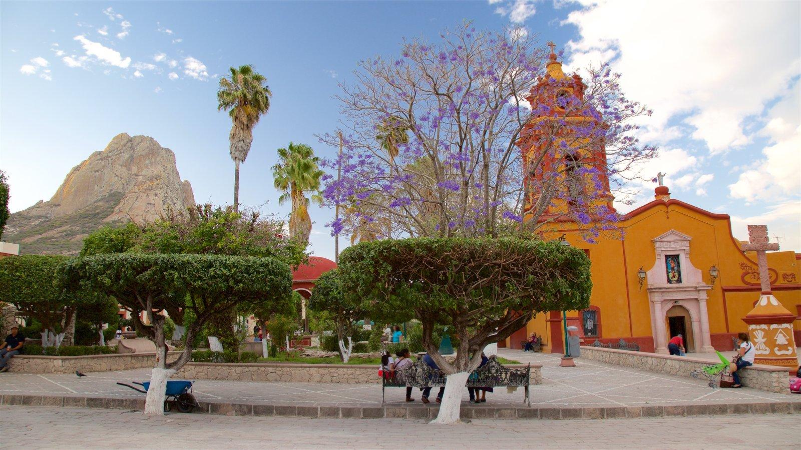 Bernal que inclui uma praça ou plaza, flores silvestres e montanhas