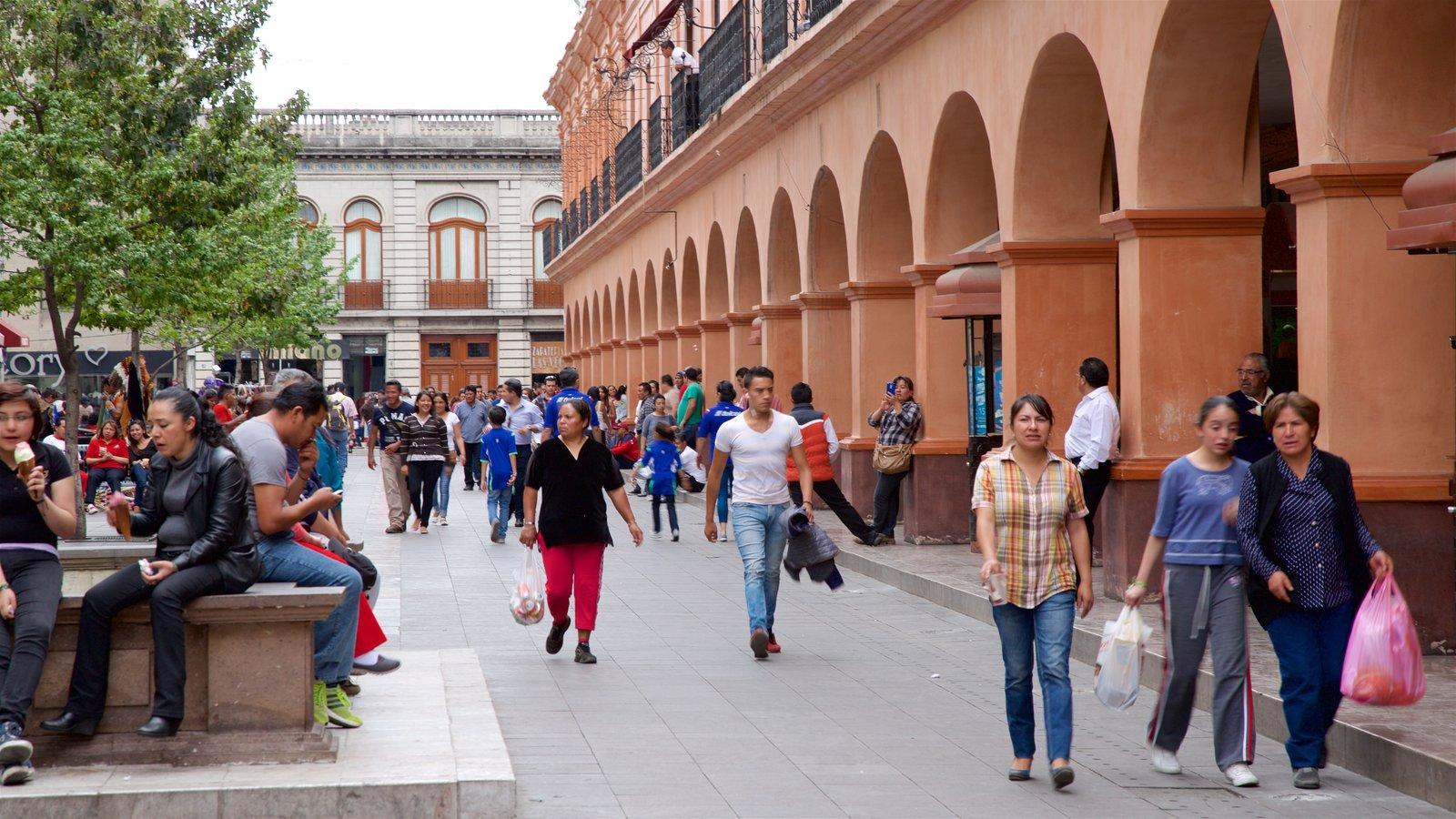 Toluca mostrando un parque o plaza y también un pequeño grupo de personas