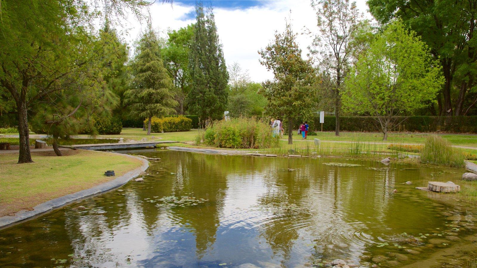 Fotos de parques y jardines ver im genes de tlalnepantla for Estanque ecologico