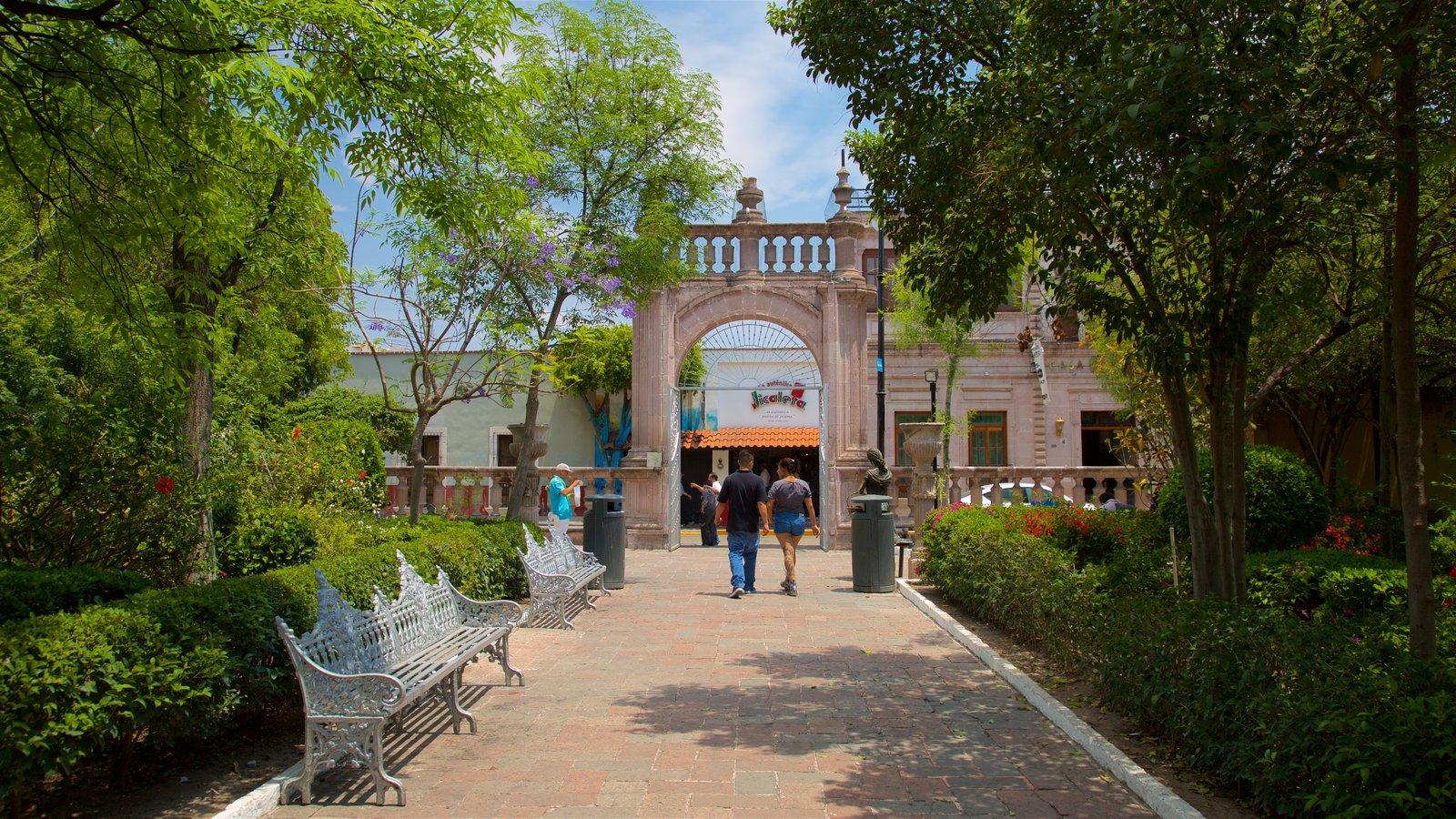 personas caminando por el Jardín de San Marcos