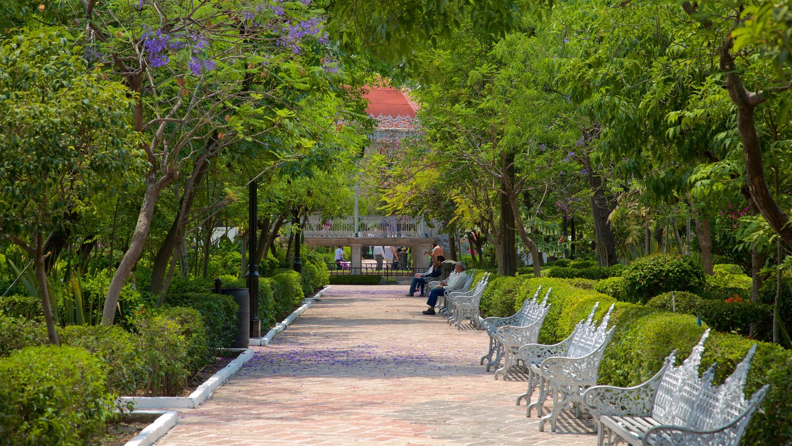 Gardens parks pictures view images of aguascalientes for Fotos de jardines de casas