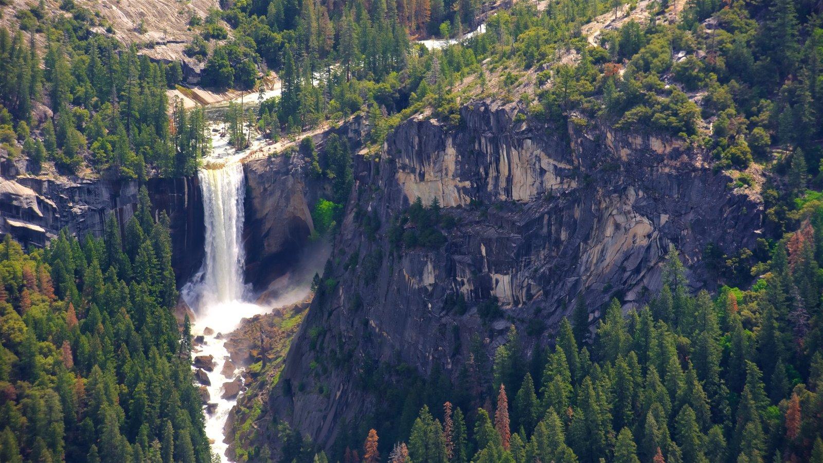 Glacier Point mostrando cenas tranquilas e uma cascata