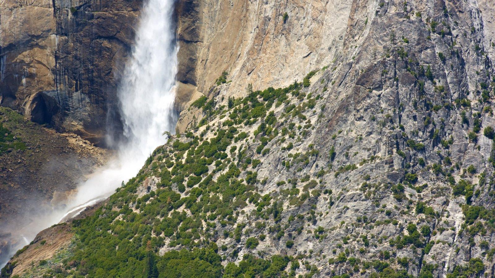 Glacier Point que inclui uma cachoeira e cenas tranquilas
