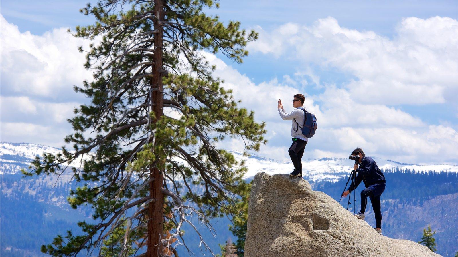 Glacier Point mostrando paisagens assim como um homem sozinho