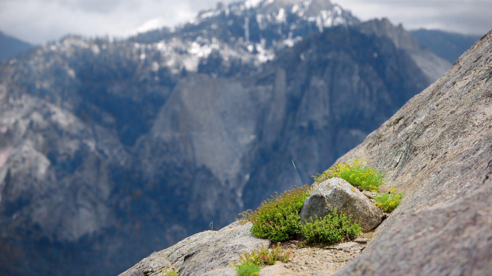 Sequoia National Park que inclui montanhas