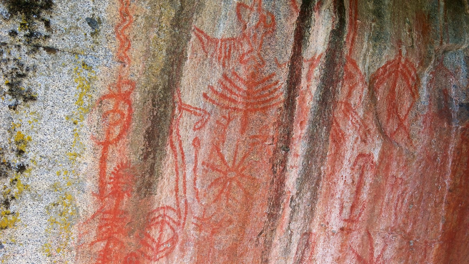 Sequoia National Park caracterizando arte
