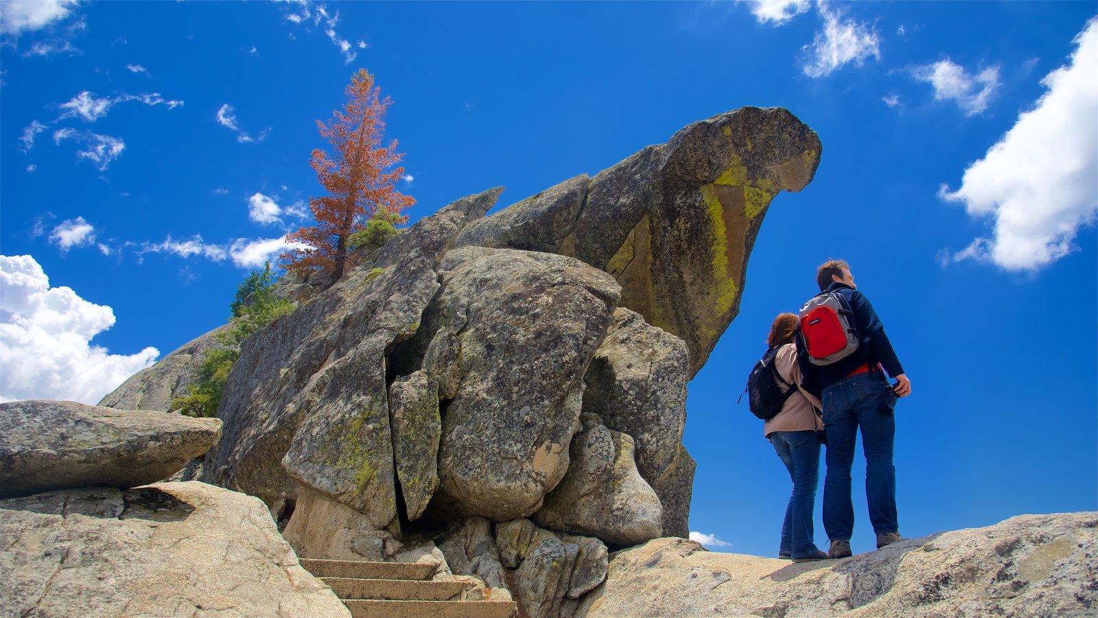 Sequoia National Park que inclui cenas tranquilas assim como um casal