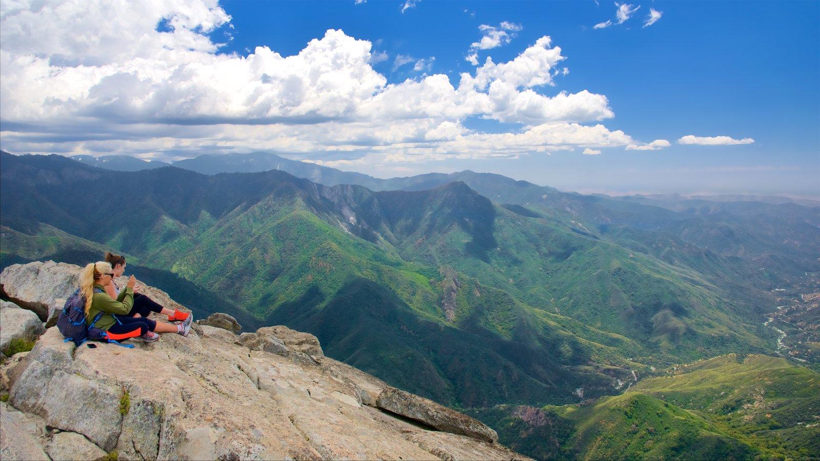 Sequoia National Park que inclui paisagens, montanhas e paisagem