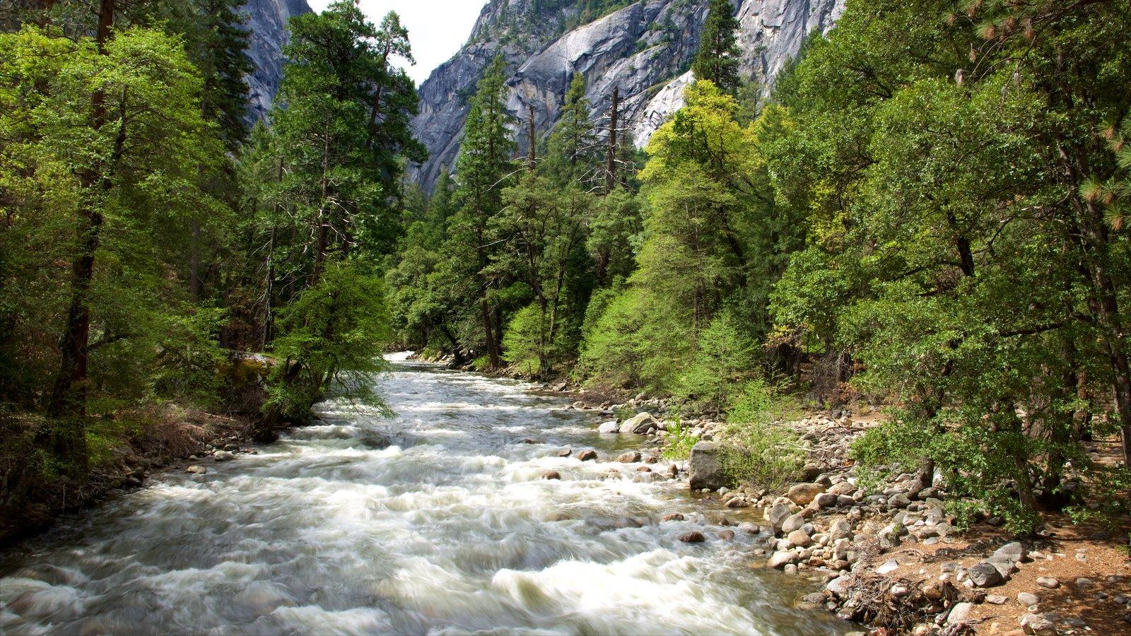 Região central do interior da Califórnia mostrando florestas e um rio ou córrego