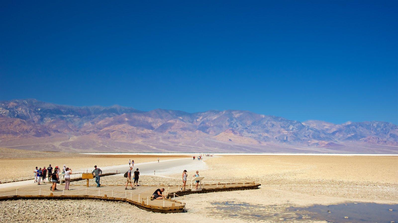 Vale da Morte mostrando cenas tranquilas e paisagens do deserto assim como um pequeno grupo de pessoas