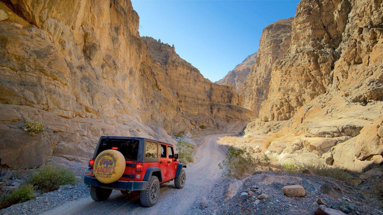 Vale da Morte que inclui um desfiladeiro ou canyon, paisagens do deserto e 4x4