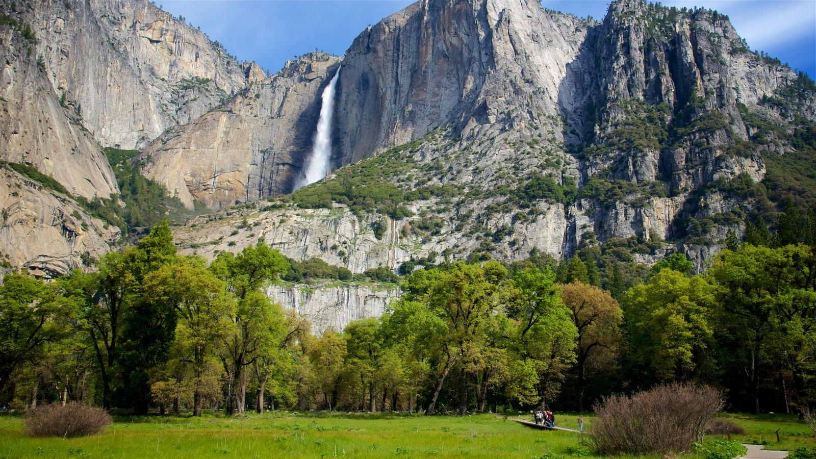 Parque Nacional Yosemite que incluye una cascada, montañas y un parque
