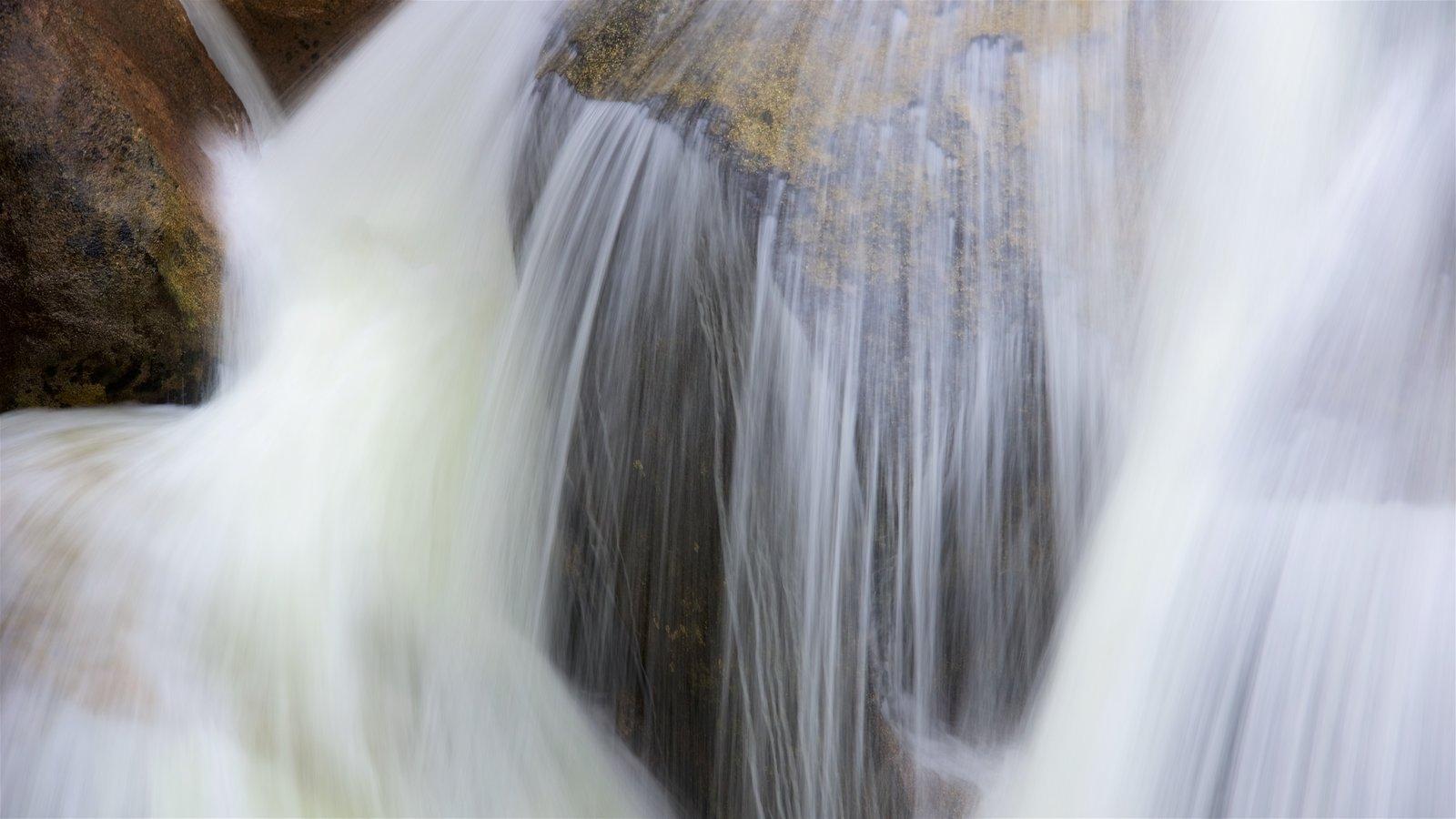 Parque Nacional Yosemite ofreciendo una cascada