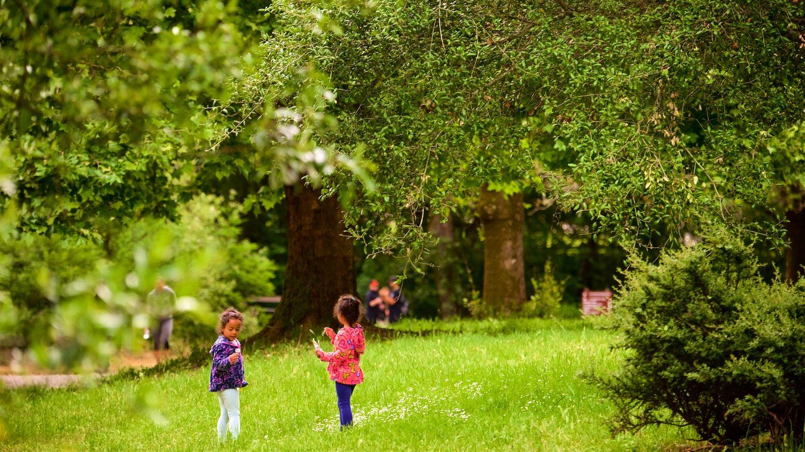 Redwood Regional Park caracterizando um jardim assim como crianças