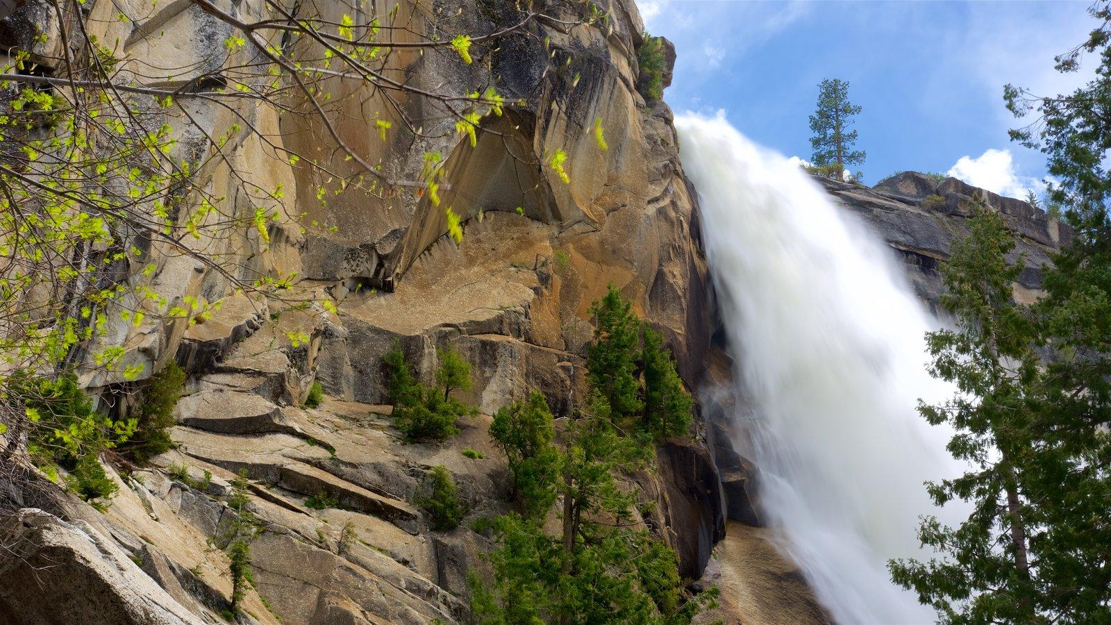 Nevada Falls mostrando um desfiladeiro ou canyon e uma cascata