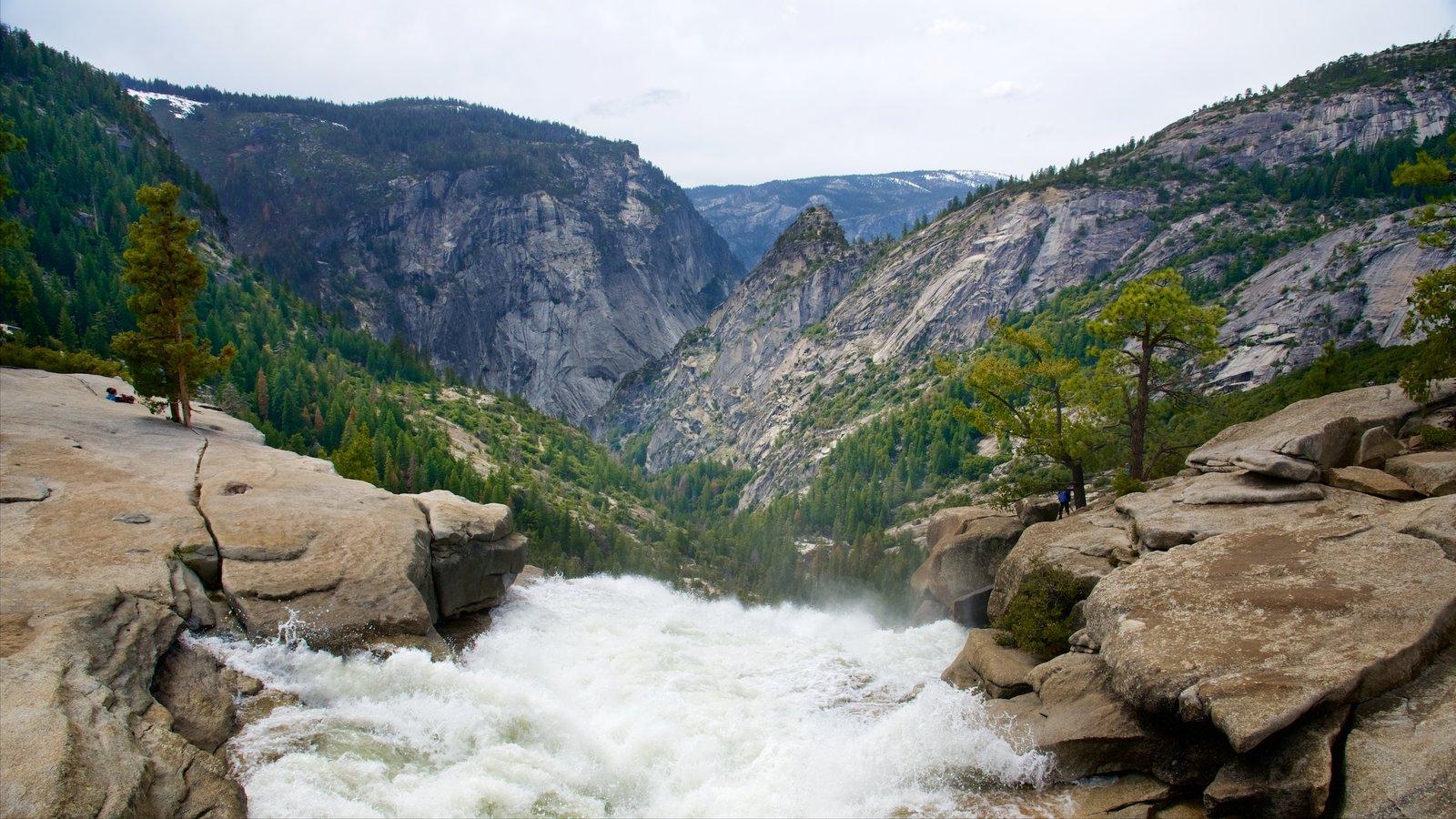 Nevada Falls mostrando cenas de floresta, montanhas e uma cachoeira