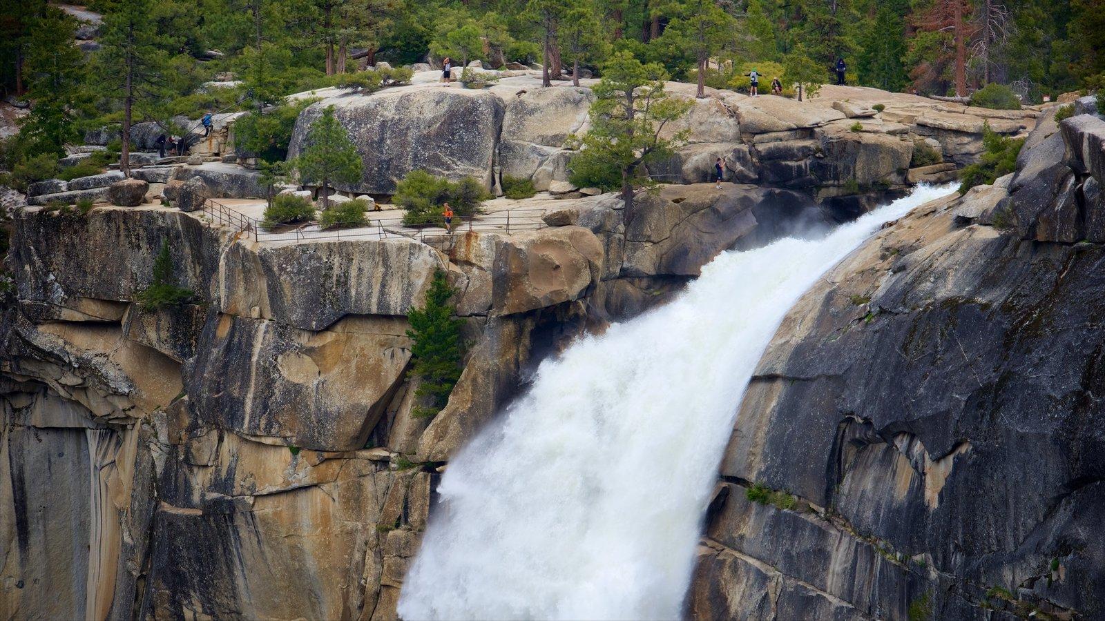 Nevada Falls mostrando uma cascata e um desfiladeiro ou canyon