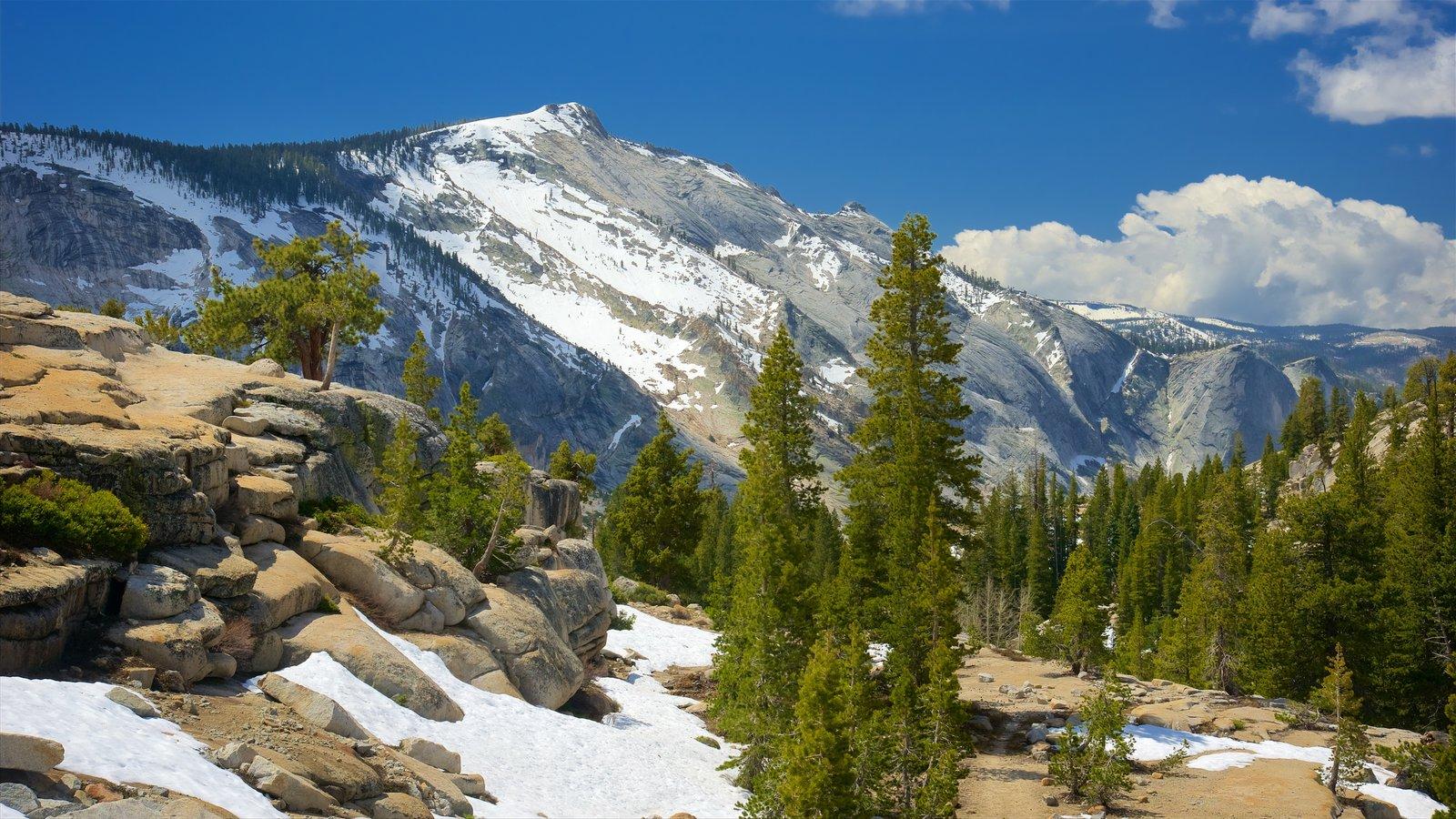 Olmsted Point que inclui paisagem, cenas tranquilas e neve