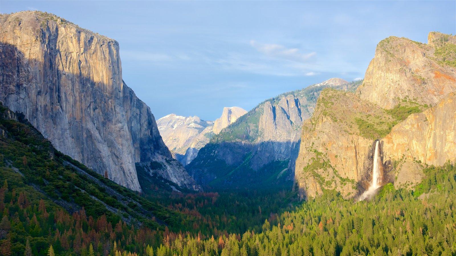 Tunnel View que inclui montanhas, cenas de floresta e paisagem