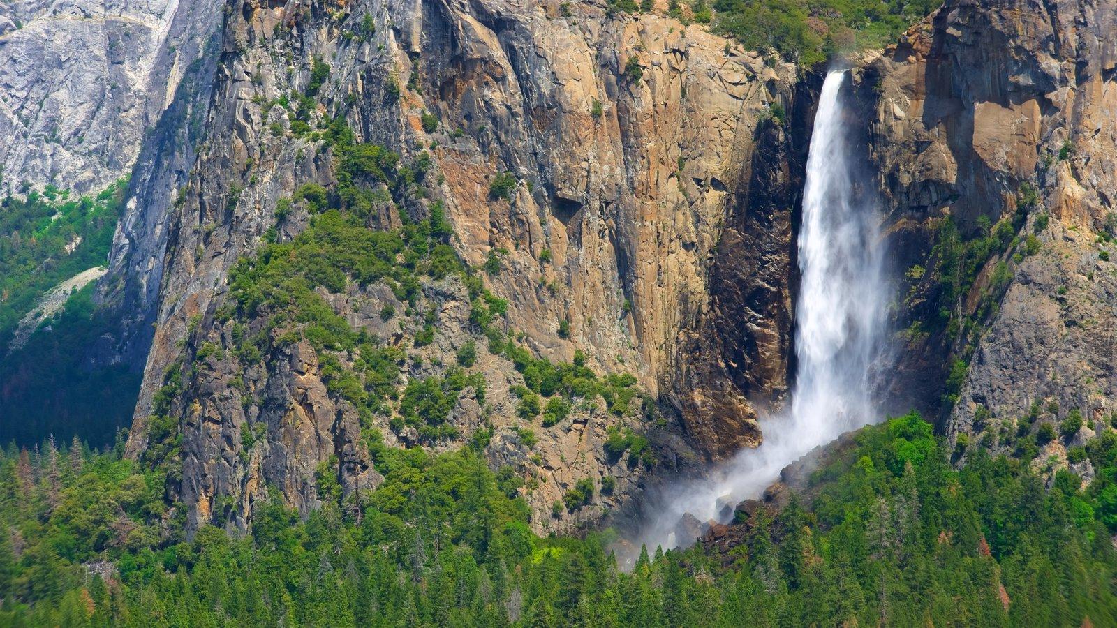 Tunnel View mostrando uma cascata, florestas e montanhas
