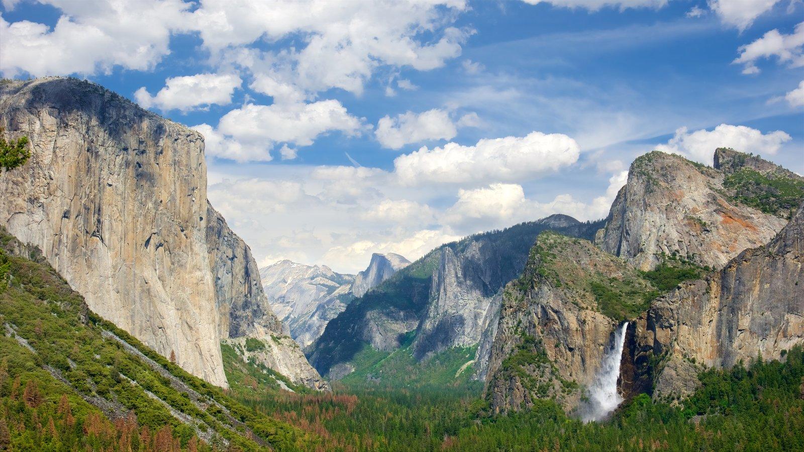 Mirador Tunnel View mostrando vistas de paisajes, bosques y montañas