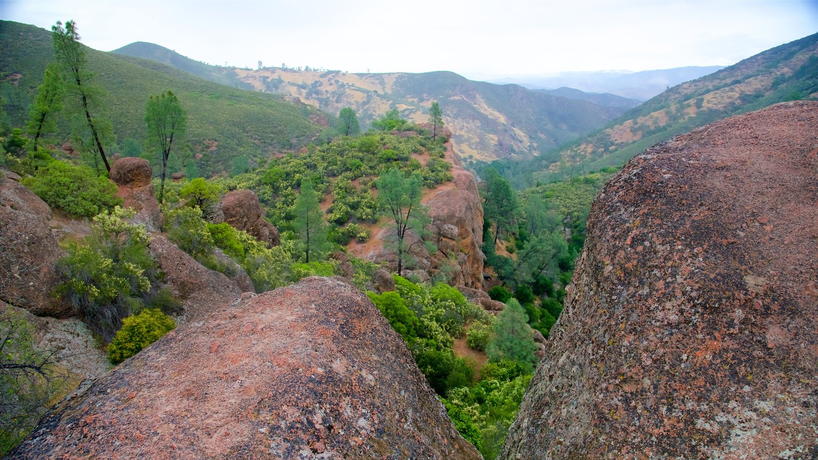 Pinnacles National Park featuring tranquil scenes